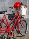 Rode-fiets-(Ansichtkaart)