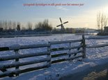 Sneeuwhek-(Ansichtkaart)