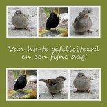Vogelfelicitatie