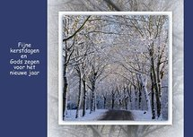 Bos in sneeuw (Ansichtkaart)