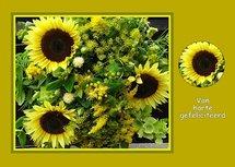 Felicitatie, zonnebloemen (Ansichtkaart)