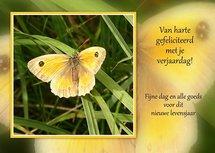 Felicitatie, vlinder (Ansichtkaart)