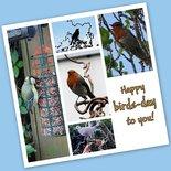 'Birds-day'
