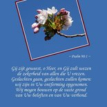 Ontferming, Psalm 90
