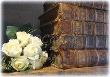 Stapel oude boeken (Ansichtkaart)