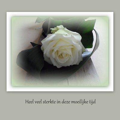Deelneming, groene roos