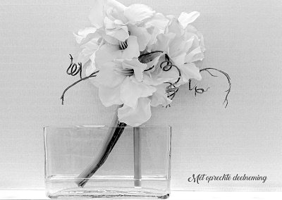 Deelneming, bloemtak (Ansichtkaart)