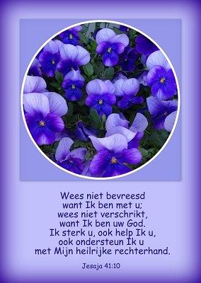 'Wees niet bevreesd' (Ansichtkaart)