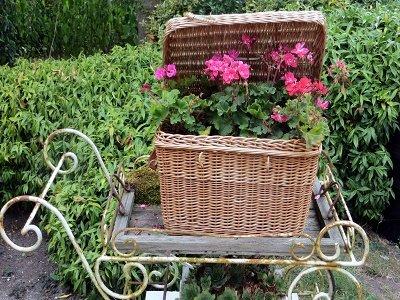 Theewagen met geraniums (Ansichtkaart)