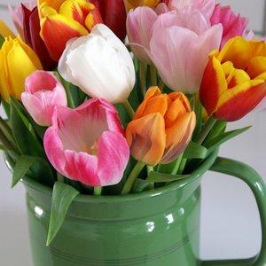 Melkkan met tulpen